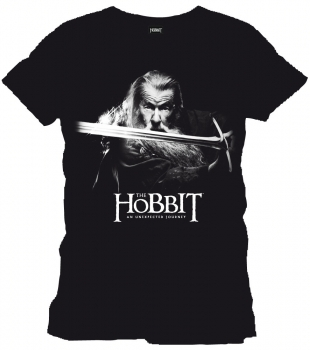 "T-Shirt: ""Gandalf black"""